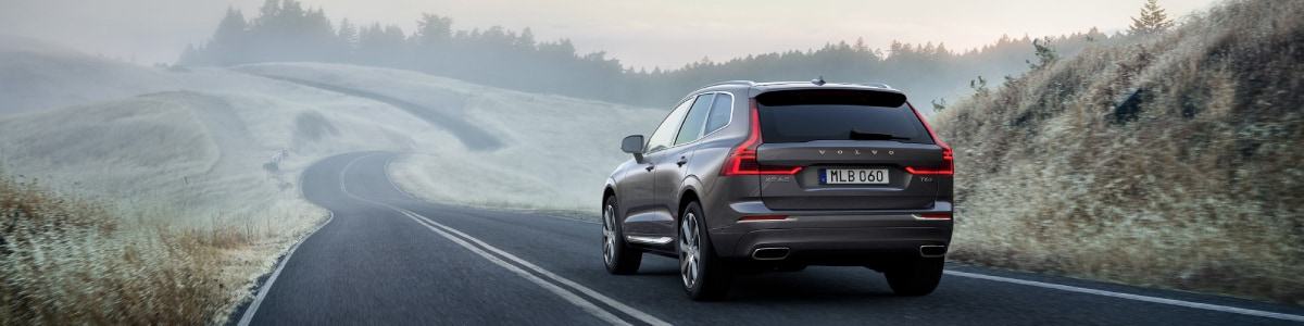 New 2020 Volvo XC60 in the woods