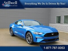New 2019 Ford Mustang Ecoboost Coupe 1FA6P8TH9K5130120 for sale in Hillsdale, MI
