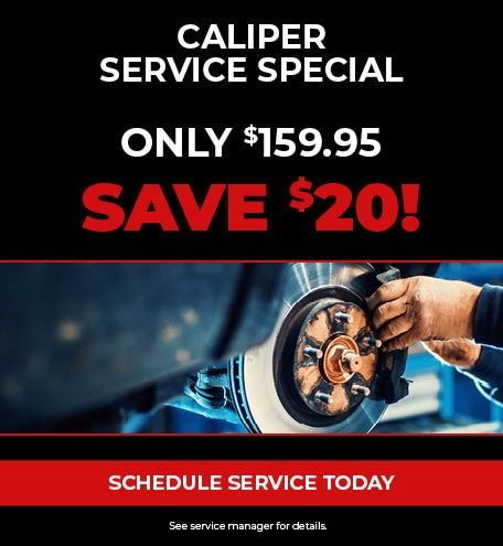 Caliper Service Special