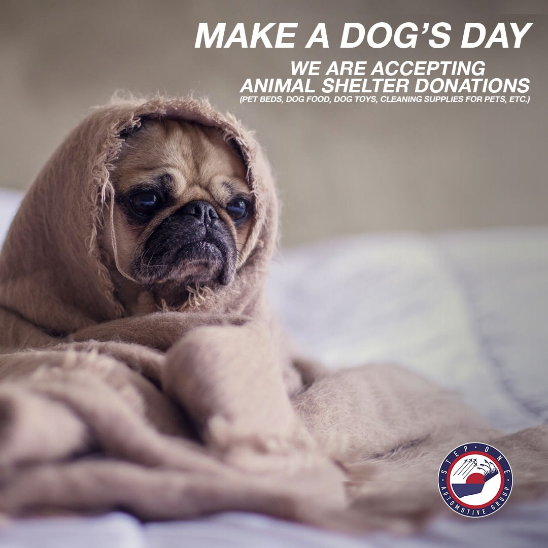 Make a Dog's Day Event