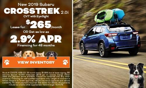 2019 Subaru Crosstrek - October