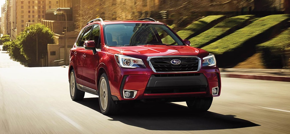 2019 Subaru Forester vs 2018 Subaru Forester | What's the Difference?