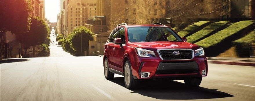 Hilton Head Subaru >> 2017 Subaru Forester Heightens Adventure for Beaufort, and