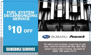 $10 off Fuel System Decarbonizing Service