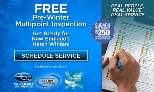 Free Pre-Winter Multipoint Inspection