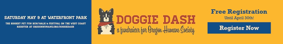 Doggie Dash Event