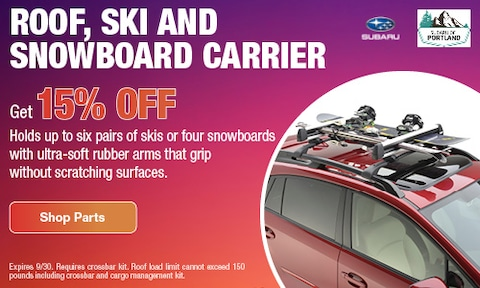 Roof, Ski, and Snowboard Carrier