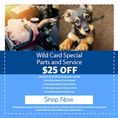 Wild Card Special Parts and Service