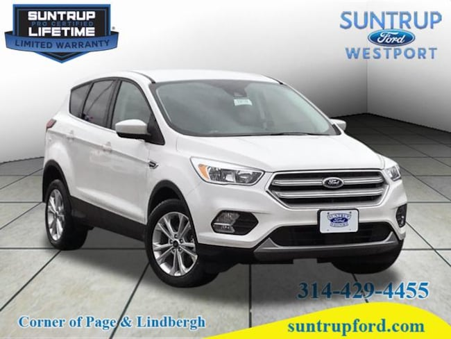 New Ford for sale 2019 Ford Escape SE SE  SUV in St. Louis, MO