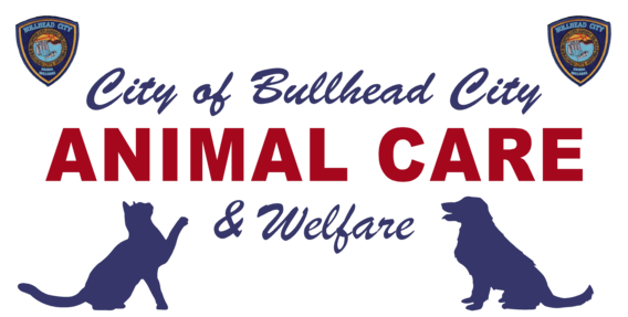 Swanty's Supports the Bullhead City Animal Care & Welfare