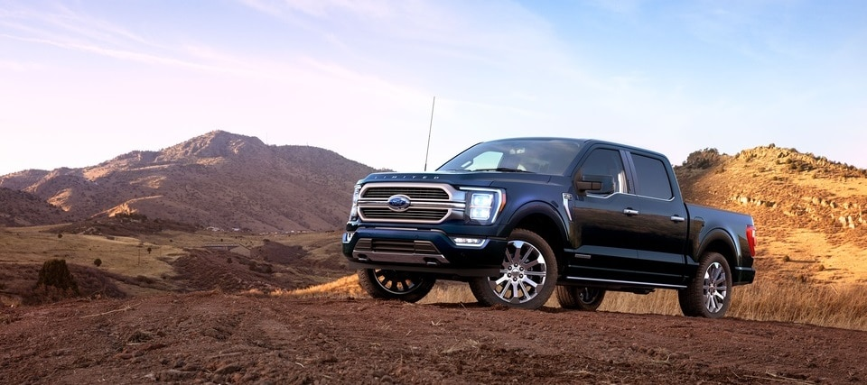 2021 Ford F-150 Holly, MI