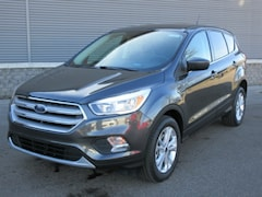 New 2019 Ford Escape SE SE 4WD for sale Kalamazoo