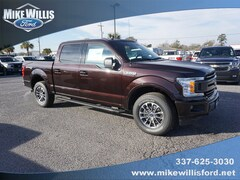New Ford for sale 2019 Ford F-150 XLT Truck 1FTEW1EP5KKC46145 in Sulphur, LA