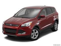 2016 Ford Escape SE SE  SUV 1FMCU0GX6GUA19820