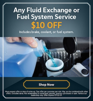 Any Fluid Exchange or Fuel System Service