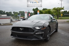 2019 Ford Mustang Ecoboost Premium Coupe in Steubenville, Ohio