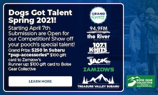 April 2021 Dogs Got Talent Competition
