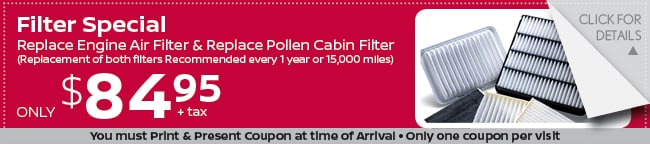 Air Filter Coupon, Grapevine