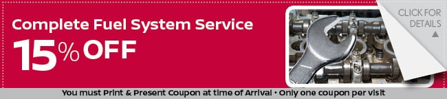Fuel System Service Coupon, Grapevine