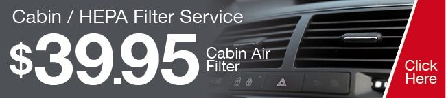 Cabin Filter Coupon, Grapevine