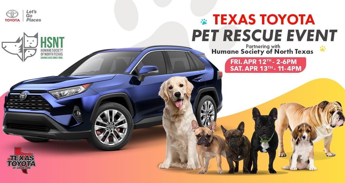 Humane Society of North Texas Pet Adoption