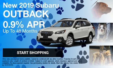 2019 Outback