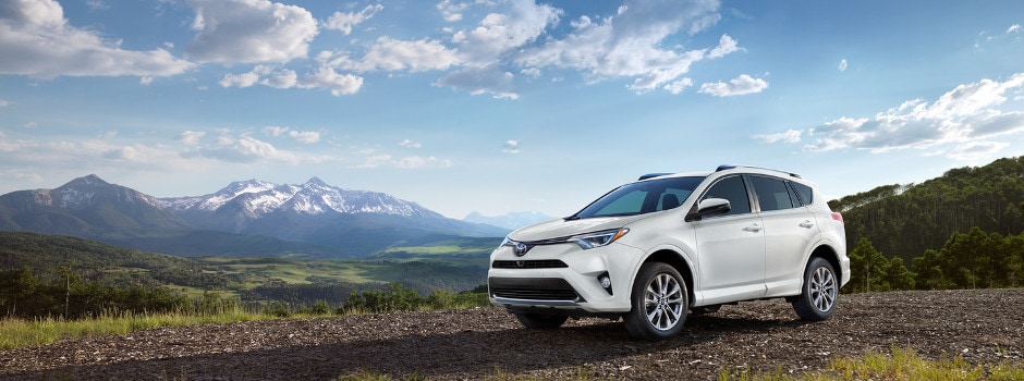 2018 Toyota RAV4 in Edgewood, MD