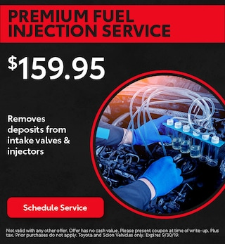 Premium Fuel Injection Service