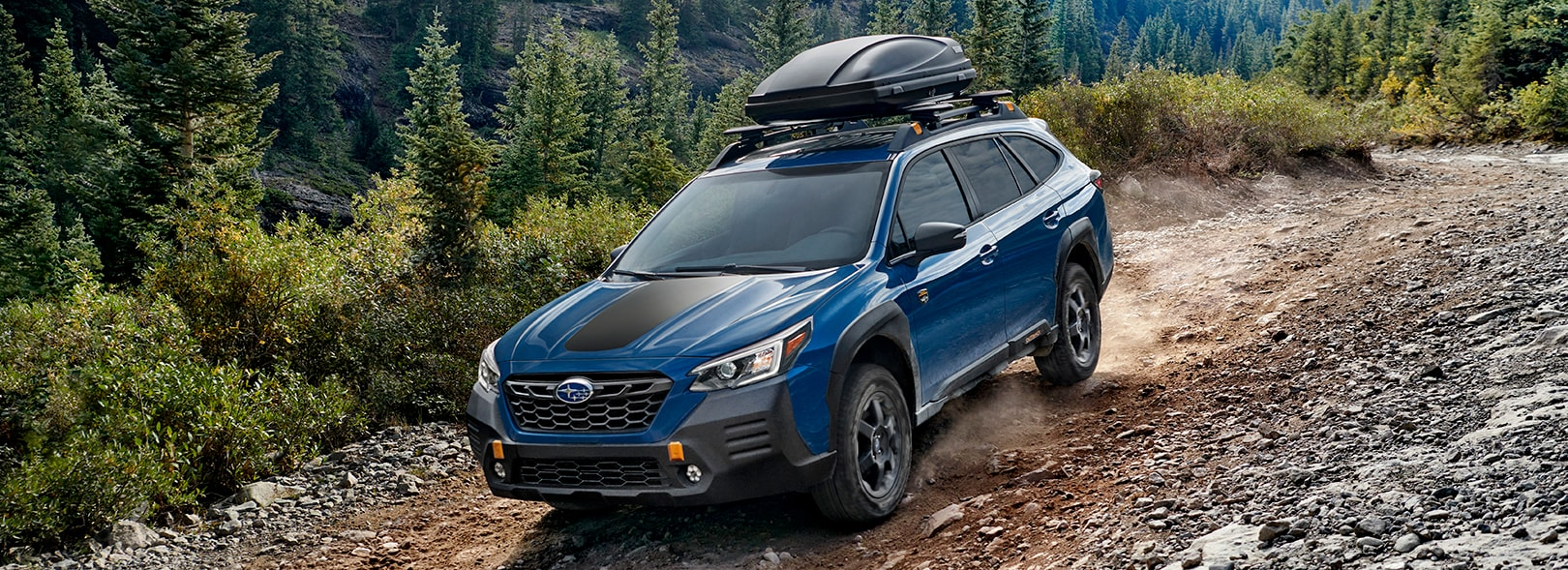 2022 Subaru Outback Wilderness - Timmons of Long Beach