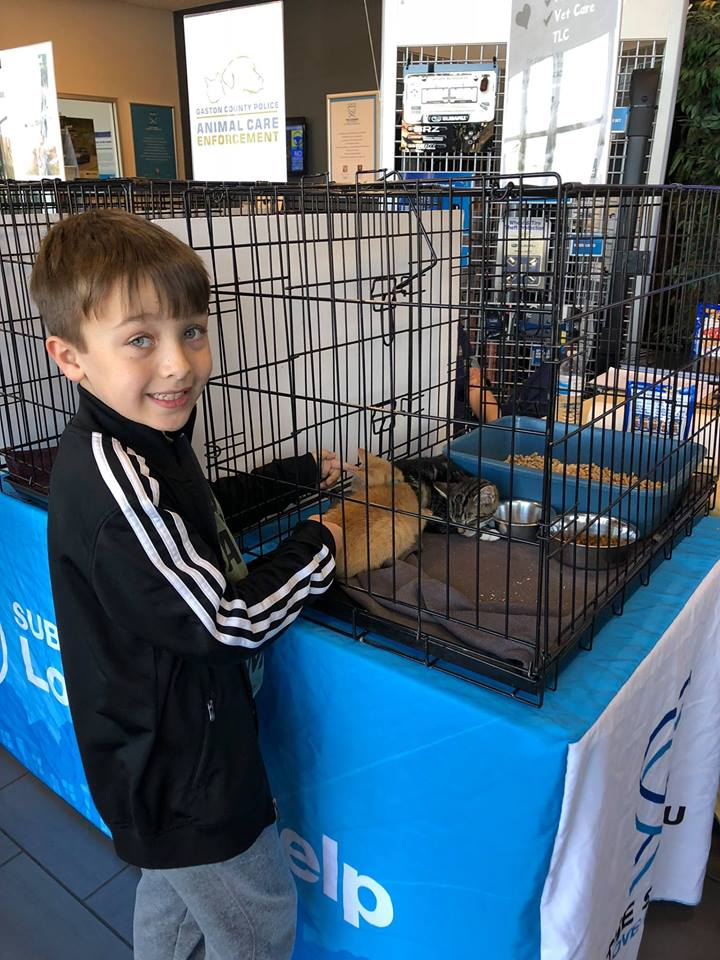 Tindol Subaru Loves Pets Week of Caring ASPCA Event