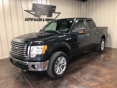 2010 Ford F-150 XLT Truck
