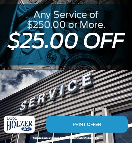 Updated January Any Service of $250.00 or More.  $25.00 OFF