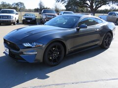 New 2019 Ford Mustang Coupe 1FA6P8TH7K5134540 for sale in Columbus, TX