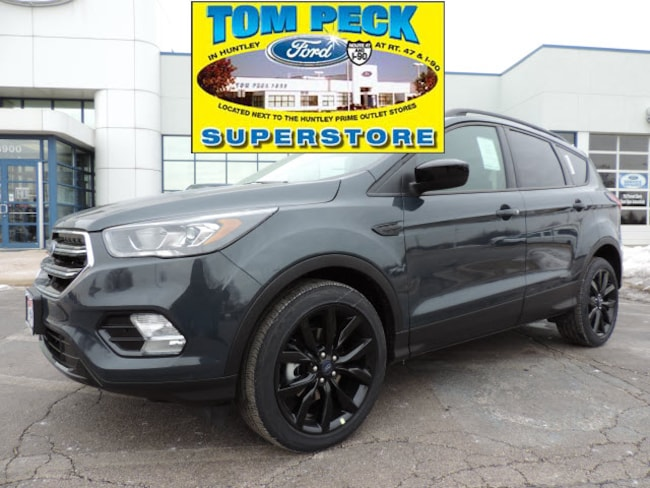New 2019 Ford Escape SE SUV 1FMCU0GD3KUB22403 for sale/lease Huntley, IL