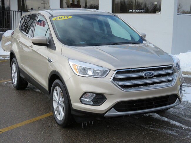 Used 2017 Ford Escape SE SE FWD for sale in Grand Rapids