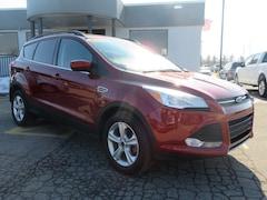 Used 2016 Ford Escape SE FWD  SE for sale in Grand Rapids
