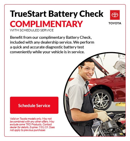 TrueStart Battery Check