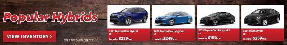 Popular Hybrids