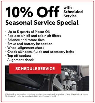 Seasonal Service Special