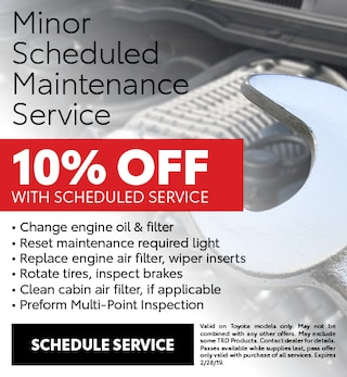 Minor Scheduled Maintenance Service