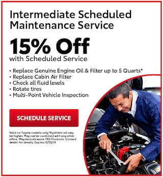 Intermediate Scheduled Maintenance Service