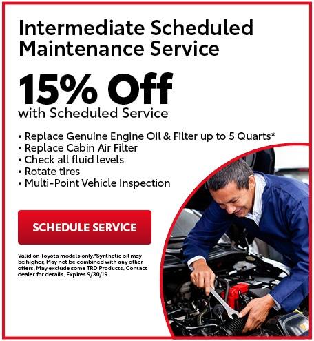 Intermediate Scheduled Maintenance Service