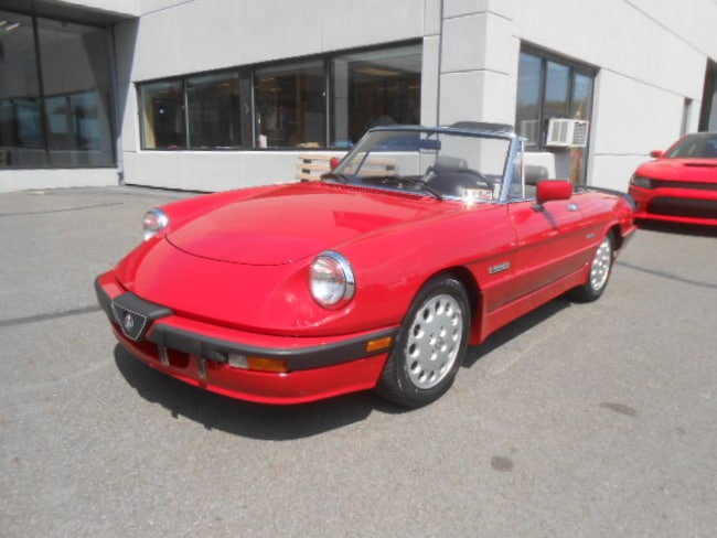 1987 Alfa Romeo Quadrifoglio Spyder Convertible