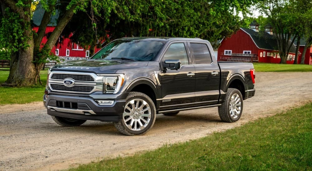 A black 2021 Ford F-150 Limited is parked on a dirt road in front of a farm after leaving a Kentucky Ford dealer.