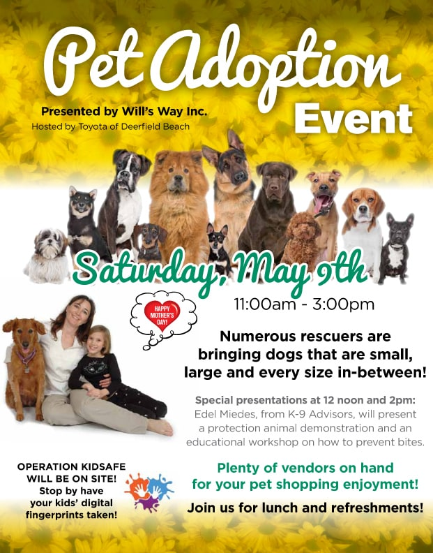 Pet Adoption Event At Toyota Of Deerfield Beach Community Events