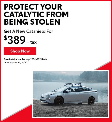 Protect Your Catalytic From Being Stolen