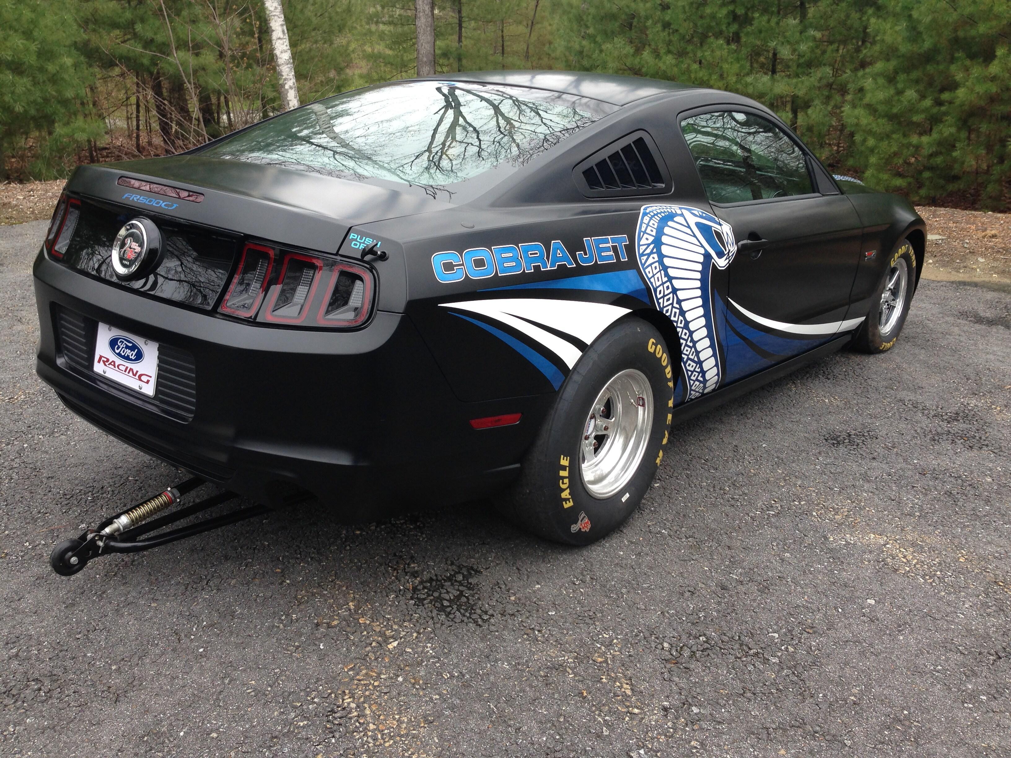 Mustang cobra pic