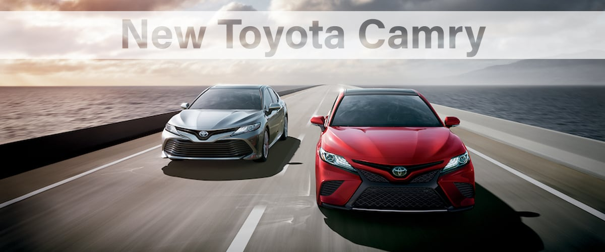 Car Lots In Somerset Ky >> New 2019 Toyota Camry For Sale In Somerset Ky Toyota Of Somerset
