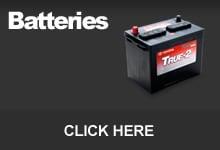 True Start Battery Special