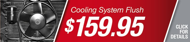 Cooling System Flush Coupon, Richardson